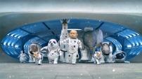Kia Sorento. Space Babies