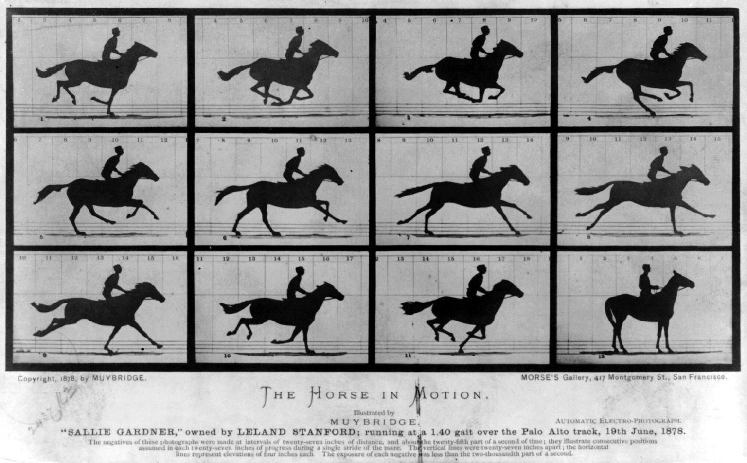 09. Eadweard Muybridge. The Horse in Motion. 1878