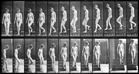 11. Eadweard Muybridge. Mulher descendo as escadas. 1887.