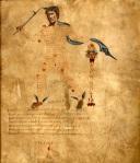 Cicero's Aratea; Hyginus Astronomica 04
