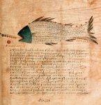 Cicero's Aratea, Hyginus, Astronomica 17