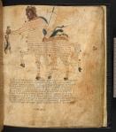 Cicero's Aratea, Hyginus Astronomica 18