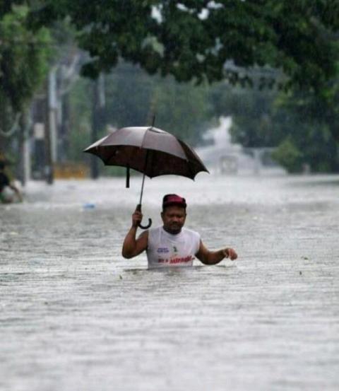 Se chove, que chova