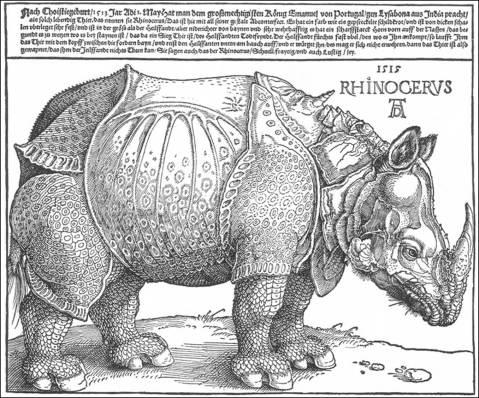 A. Dürer desenhou este rinoceronte sem nunca ter visto um especímen. Baseou-se no relato de um português. O bicho fazia parte da embaixada, de 1515, ao papa Leão X. Seguiu embarcado para Itália. Houve um naufrágio e o rinoceronte afogou-se antes de chegar ao Vaticano.