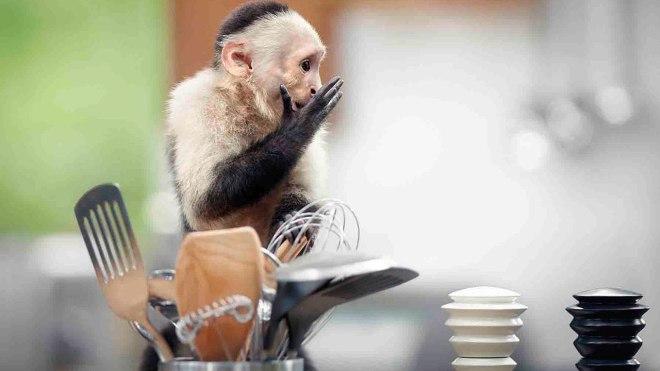 ikea-monkeys-ep