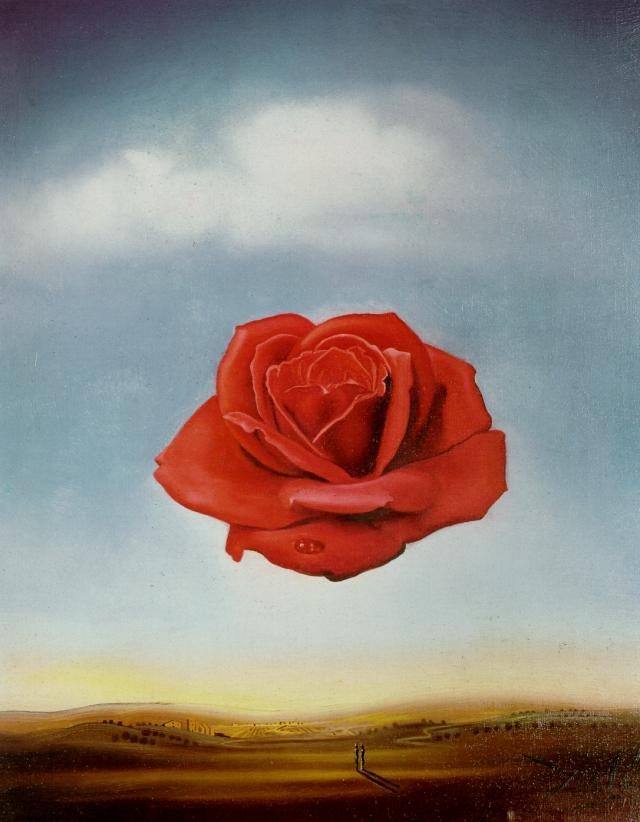 Salvador Dali. Meditative Rose, 1958