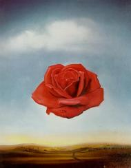 Salvador Dali. Meditative Rose, 1958