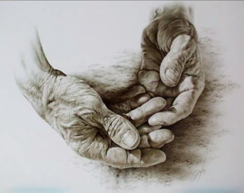 Albrecht Durer. Hands.