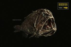 revista-veja-fishes-print-