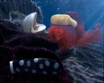 ariston_aqualtis_underwater