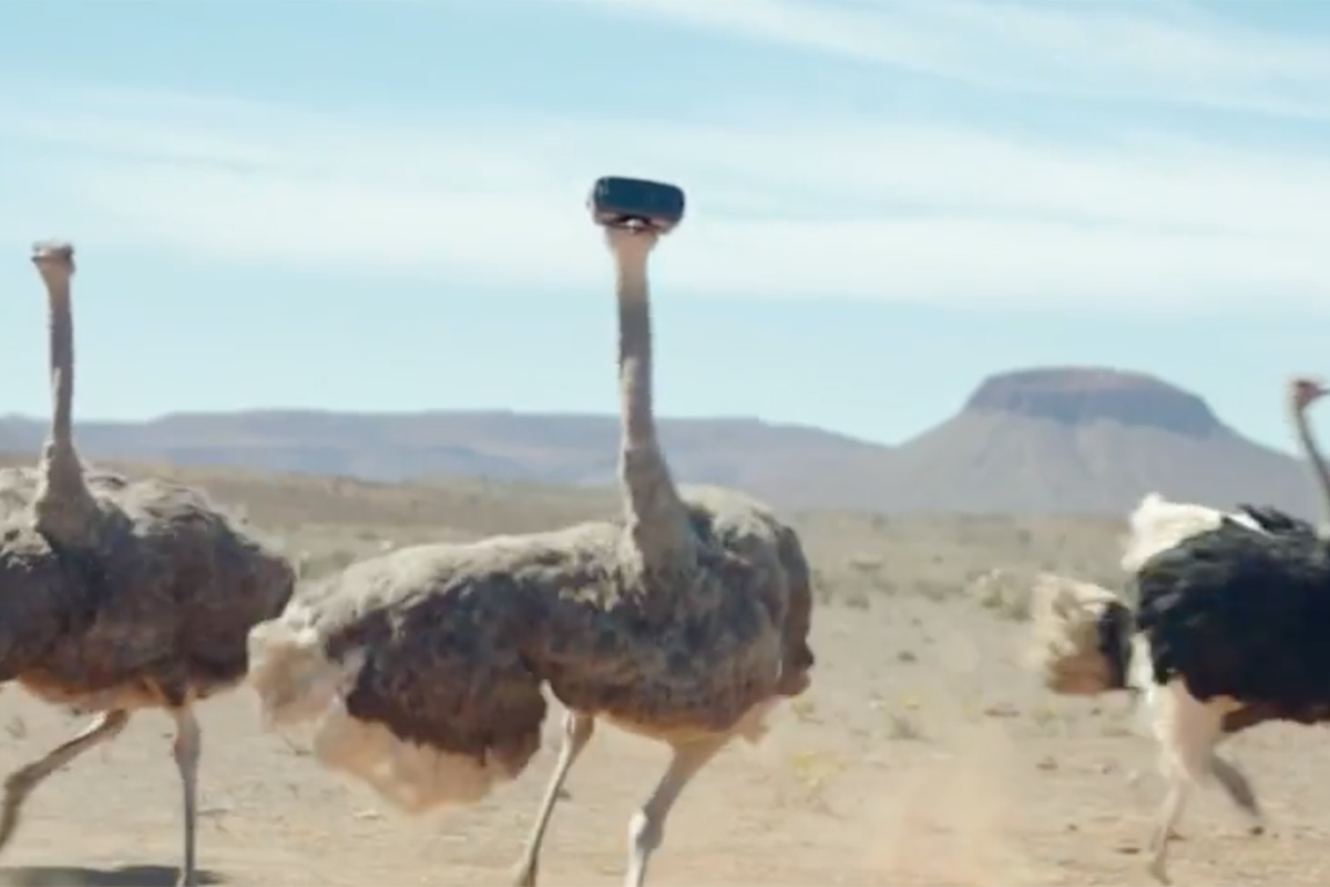 Samsung_OstrichDoWhatYouCant17