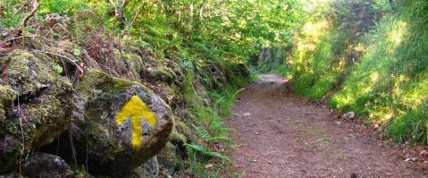 Caminho para Santiago. Oporto Discovery Tours.