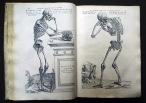 24. Vesalius Andreas. De Humani Corporis Fabrica. 1543