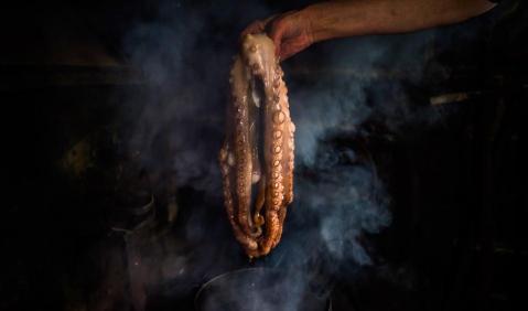 O polvo ainda é o prato tradicional da noite de Consoada junto à fronteira com a Galiza. Um ato de resistência contra o tempo.. Fotografia de Gonçalo Delgado.
