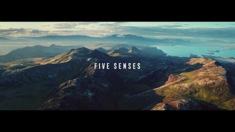 Turkish airlines 5 senses