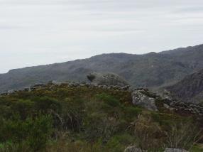 26.Tartaruga a caminho do castelo de Castro Laboreiro