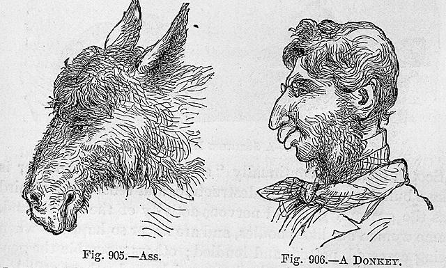 S. Wells, New Physiognomy, or Signs of Character..., NY, 2. 1871