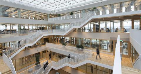 Universidade Erasmus de Roterdão