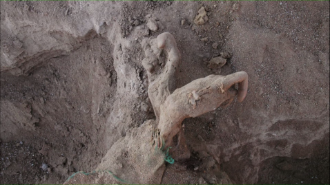 Nostalgia da Luz. Corpo de uma prisioneira do Regime Militar encontrado no deserto durante as filmagens.