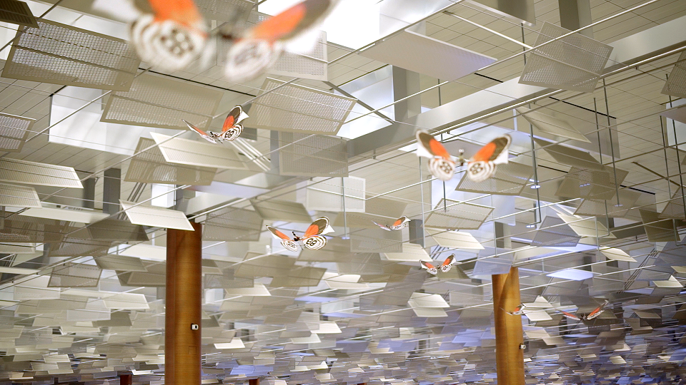 """Dancing-butterflies-flying-through-Changi-Airport-as-part-of-""""Be-A-Changi-Millionaire""""-promotion"""
