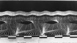 1. Etienne-Jules Marey. Chronophotographic study. Walking.1884.