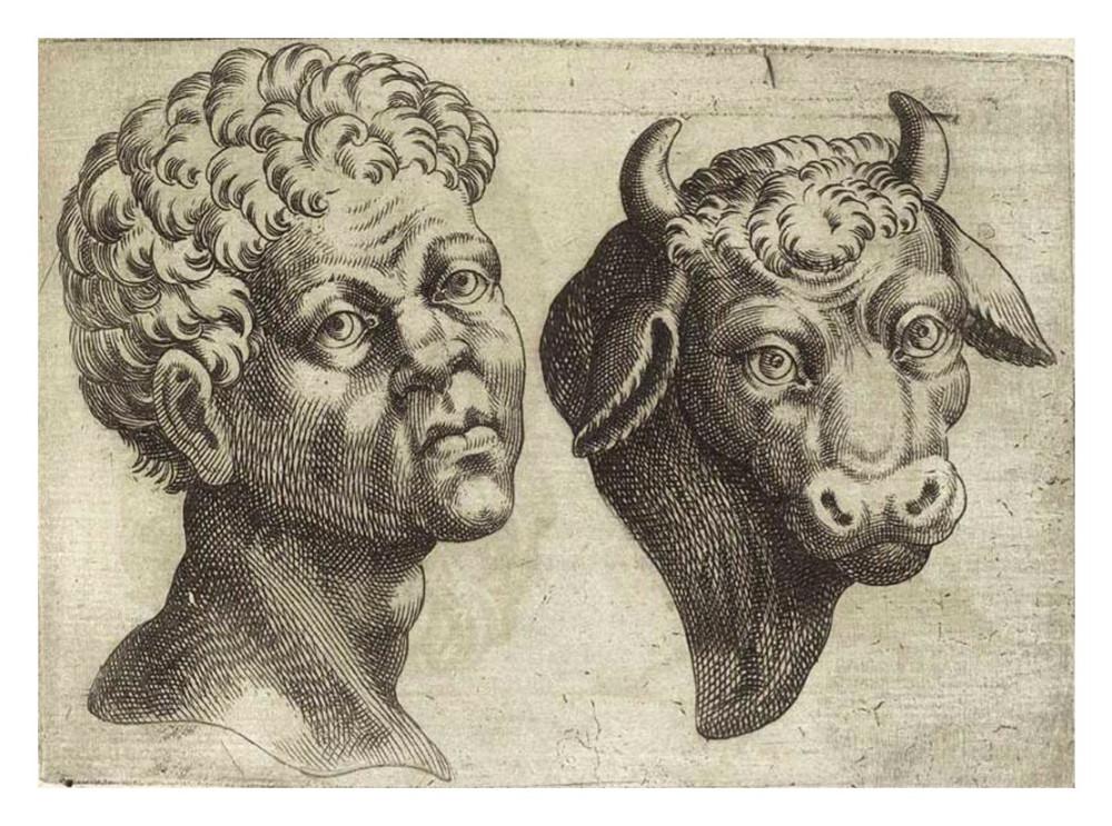 Giambattista della Porta. Touro. De humana physiognomonia. 1586